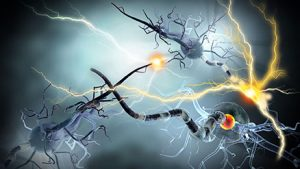 37592220 - high quality 3d render of nerve cells, concept for neurologic diseases, tumors and brain surgery.